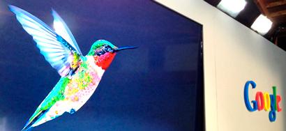 Что необходимо знать предпринимателям о последних изменениях Google Колибри